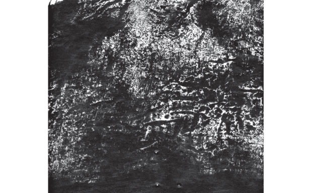 Mammifer / Pyramids | Split LP